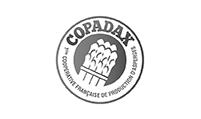 06 – COPADAX