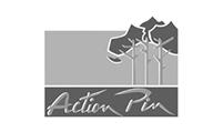 33 – Action Pin